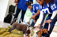 indianapolis colts visit 2014